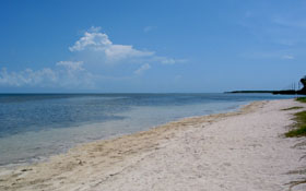 Beach at Little Duck Key